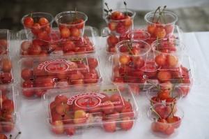 2012-cherry_fruits.jpg