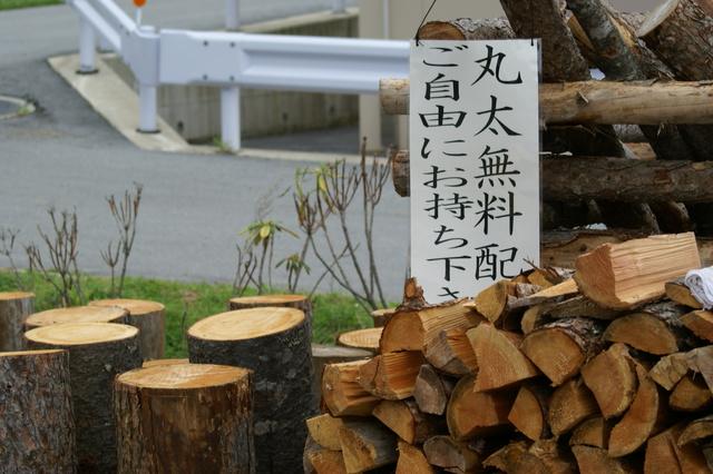 乙女湖丸太.JPG