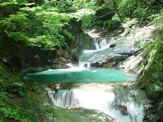 夏の三重の滝.jpg