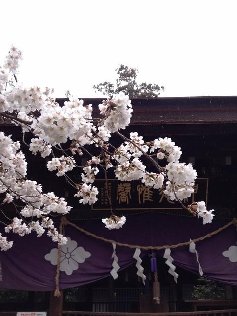 窪八幡神社.jpg