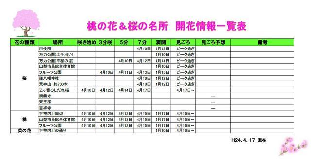 public_hana_pic2.jpg